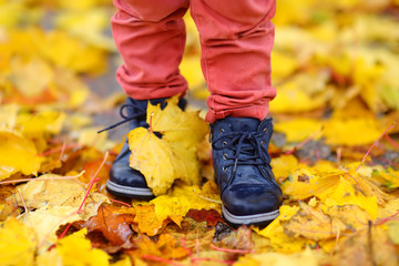 Close up photo of child legs in boots on background of a golden maple leaves.