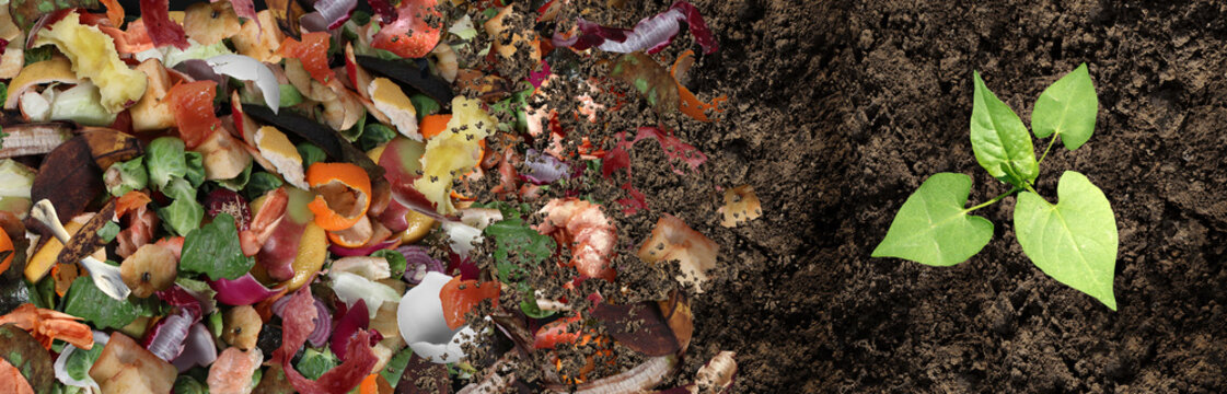 Composted Soil Cycle