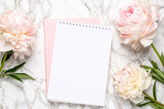 Beautiful white peony flower and notebook on marble background
