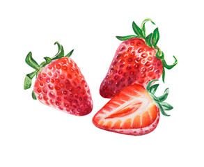 Watercolor red juicy strawberries with half berry. Food background, painted bright composition. Hand drawn food illustration. Fruit print. Summer sweet fruits and berries.