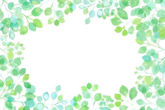新緑の木漏れ日のフレーム