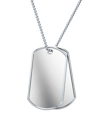 Pair of Blank stainless steel soldier dogtag isolated on white background. 3d rendering.