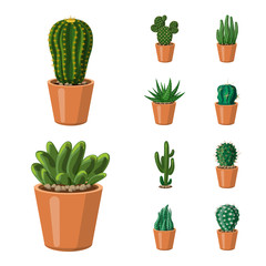 Vector illustration of cactus and pot symbol. Collection of cactus and cacti stock symbol for web.
