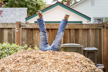 Legs sticking out of a pile of wood chips as if a person has fallen into them Wall mural
