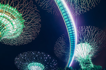 SINGAPORE, SINGAPORE - MARCH 2019: Supertrees illuminated for light show in gardens by the bay Fototapete