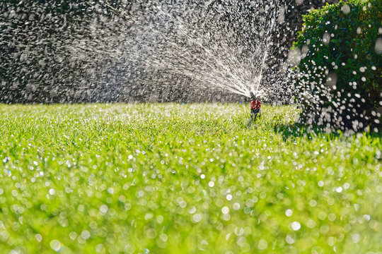 Turf irrigation by automatic pop-up sprinkler