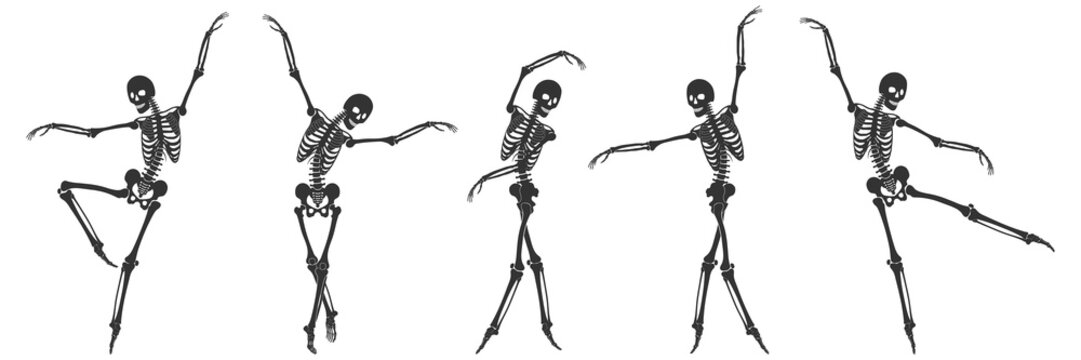Ballet. Five dancing black silhouettes of skeletons isolated on a white background. Vector illustration