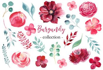 Burgundy flowers hand drawn watercolor raster illustrations set