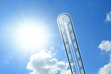 Thermometer 114