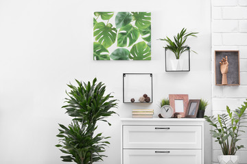 Stylish modern room interior with exotic houseplants