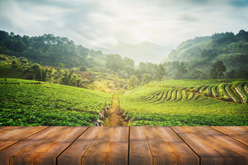 wooden table with scenic view of strawberry field at Doi Ang Khang, Chiang Mai, Thailand Fototapete