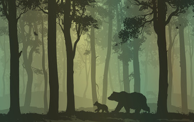 Wall Mural - bears in the forest