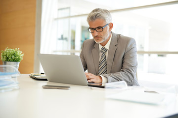 Mature businessman working on computer in corporate office