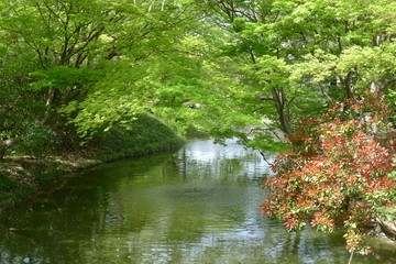 River Channel in the Fort Worth Botanic Garden