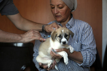 Rodica Athamneh carries a puppy while giving him the vaccination in Aqaba