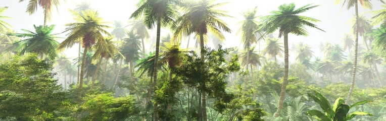 Jungle morning in the fog, palm trees in the haze, jungle panorama Wall mural