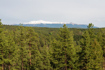 Pike's Peak and alpine forest