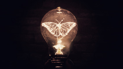 Butterfly Illuminated Inside Filament Light bulb Conceptual Photo Art of New Ideas Transformation Invention Creativity  And Science