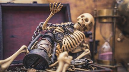Greedy Skeleton With His Treasure