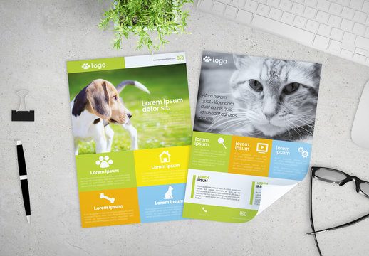 Veterinary Services Flyer