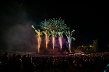 The fireworks with silhouette of audience