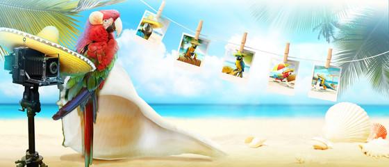 Papagei mit Fotoapparat im Urlaub am Strand