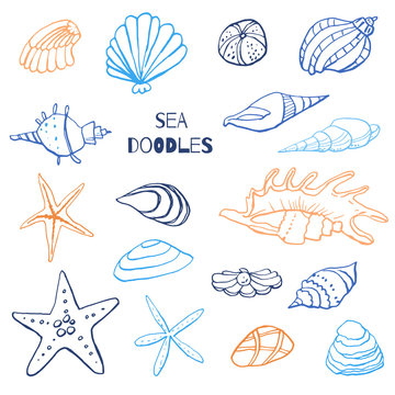 Collection of sea marine ink doodles on white backdrop. Stock set. Cute marine icons. Can be used for printed materials. Vacation holiday background. Hand drawn design elements. Festive card.