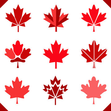 Maple leaf icon in red for canada flag set of leaves