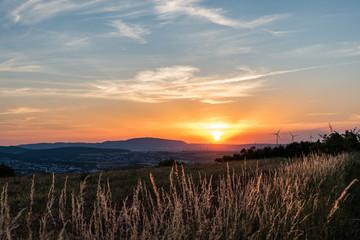 goldene gräser im sonnenuntergang Fototapete