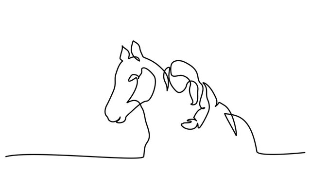 One line drawing. Girl lying a horse