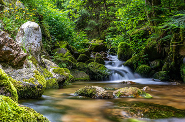 tiny waterfall in black forest, germany