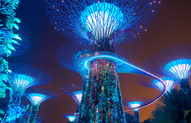 Gardens by the Bay at night in Singapore Fototapete
