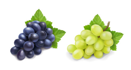 Red and white table grapes. Wine grapes realistic bunch vector icon set Fototapete