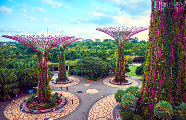 Photo sur Toile Singapoure Gardens by the Bay with Supertree in Singapore