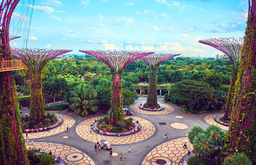Gardens by the Bay  with Supertree in Singapore Fototapete