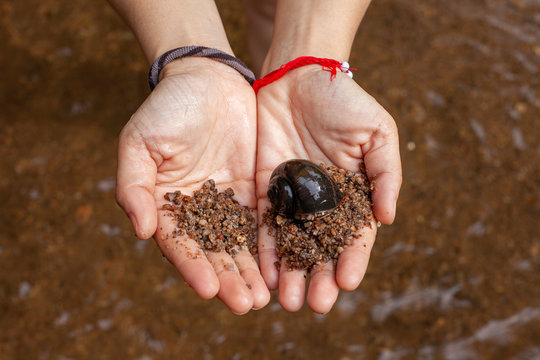 Go out to experience nature . Snail from natural water on the hand of a woman at Rivers, streams .