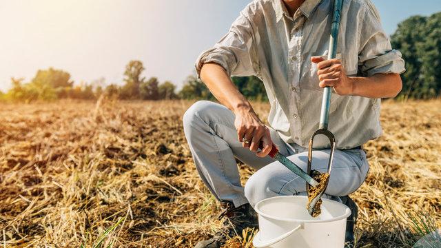 Soil Sampling. Woman Agronomist Taking Sample With Soil Probe Sampler