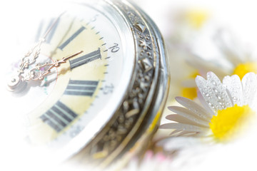 pocket watch in a beautiful romantic flowers