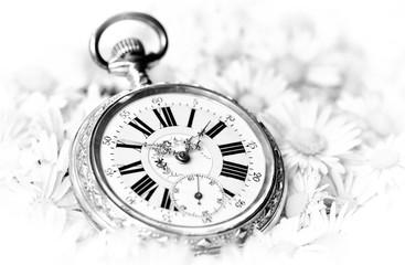 pocket watch in a beautiful romantic flowers, monochrome version