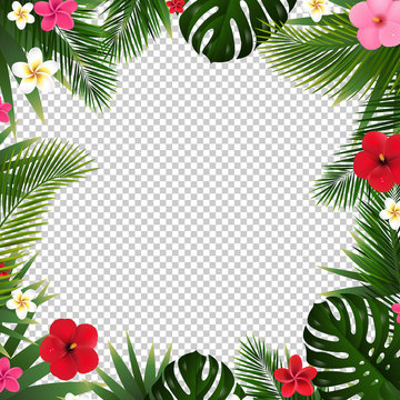 Palm Leaf And Flowers Isolated Transparent Background