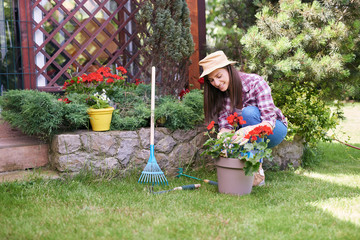 GOrgeous Caucasian brunette dressed in work wear and with hat and gloves planting pelargonium in her backyard.