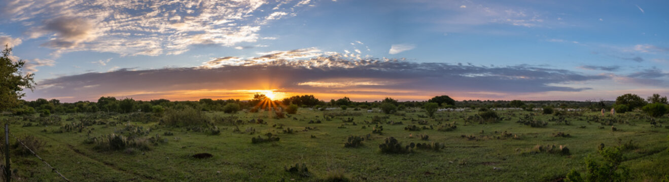 Sunrise over a Texan cactus filled field