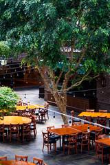 outdoor cafe in the garden
