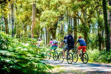 groupes de cyclistes dans la forêt des Landes