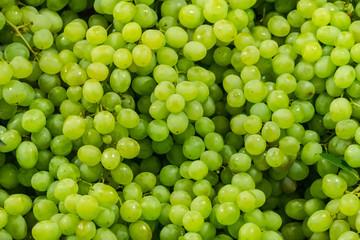 Fresh Fruit Brunch Green Grapes on Shelf in Fresh Fruit market Thailand Travel Background Concept