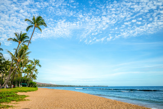 scenery at kaanapali beach in maui island, hawaii