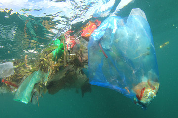 Plastic pollution in ocean. Plastic bottles, bags, cups and straws pollute sea  Wall mural