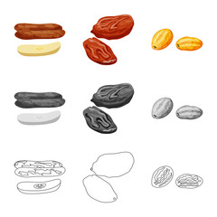 Fototapete - Isolated object of food and raw sign. Set of food and nature vector icon for stock.