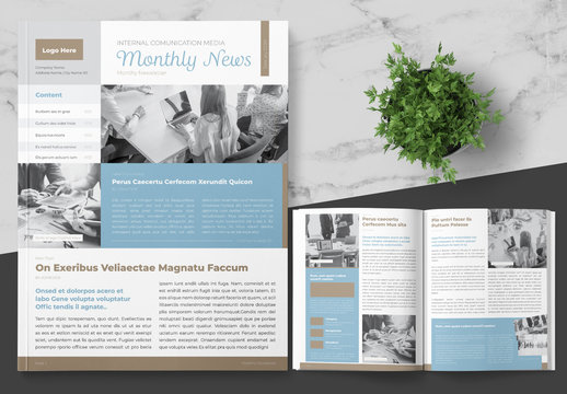 Business Newsletter Layout with Blue and Brown Accents