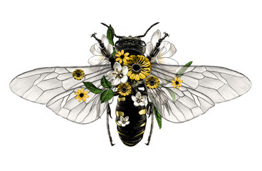 bee with open wings top view decorated with flowers and leaves symmetrically, sketch vector graphic style color illustration on white background